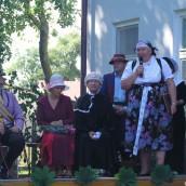 2007-06-24 Cesarz Józef II w Strumieniu i Zab?ociu