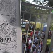 pippi-48